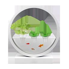 جهاز Fun Box للزراعة المائية
