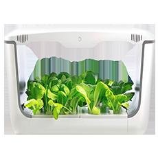 جهاز Home Box للزراعة المائية